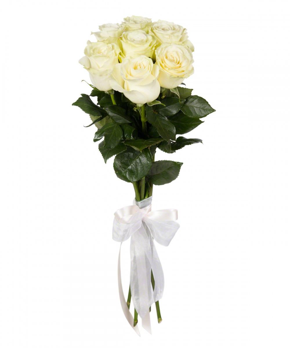 Букеты цветов фото 7 роз