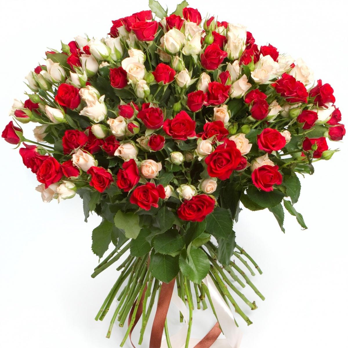 Купить розы недорого в краснодаре подарок женщине на работе